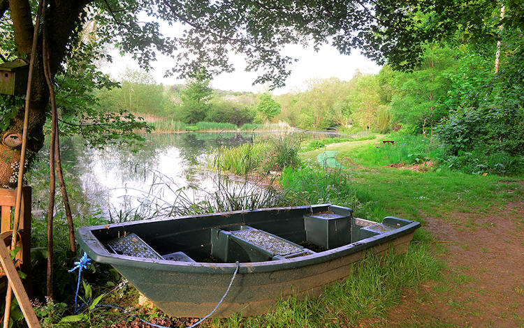 Upper Aynho Fishery was constructed specifically for fly fishing in 1973. It is now fully mature, with three secluded and peaceful lakes providing an idyllic setting for quality fly fishing, mainly of Rainbow Trout although there are some Brown Trout.